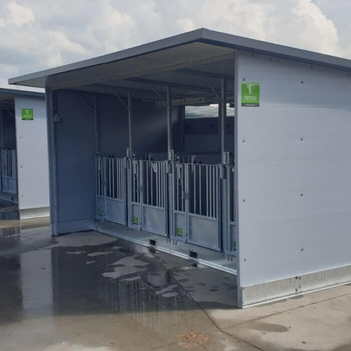 Two Quattro Calf Hutches in Holland