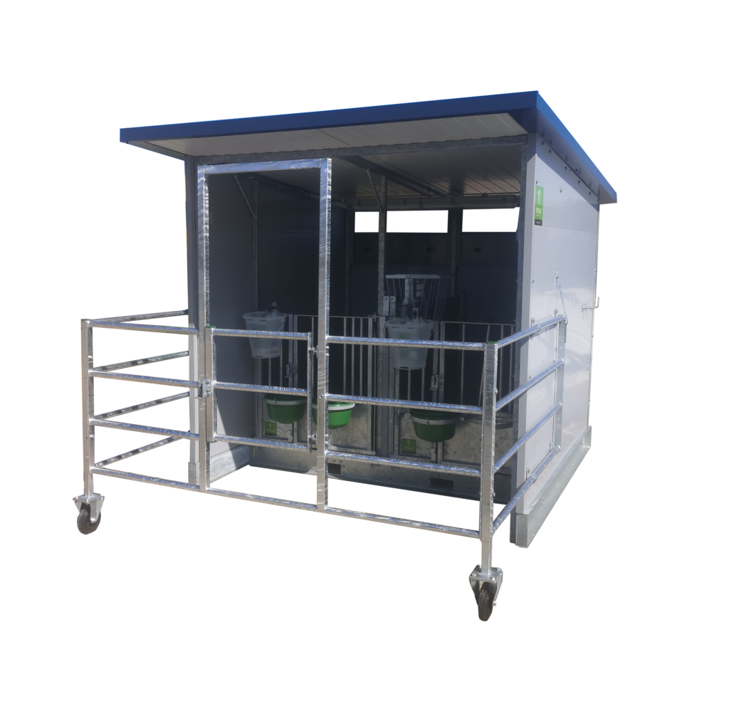 Double calf hutch with free range