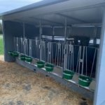 Quattro calf hutch (UK)