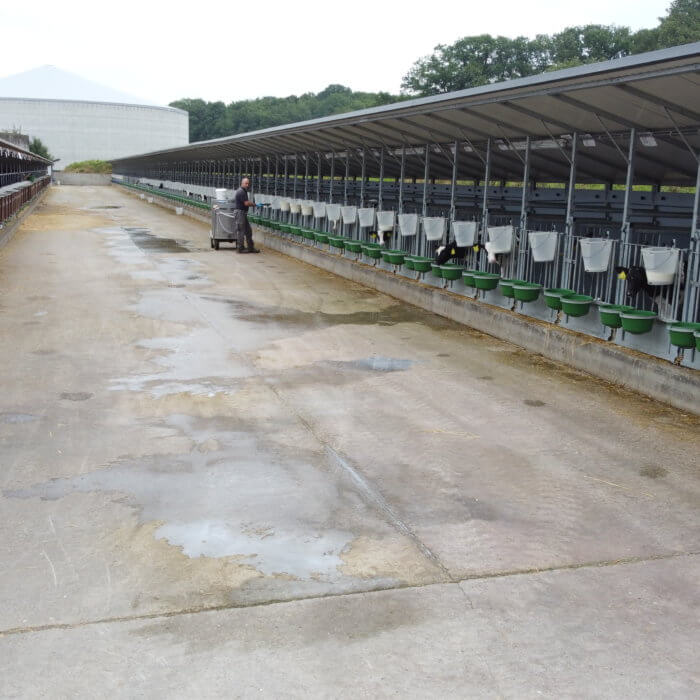 100(!) Calf pens with roof outside